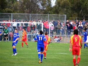 lions club vs